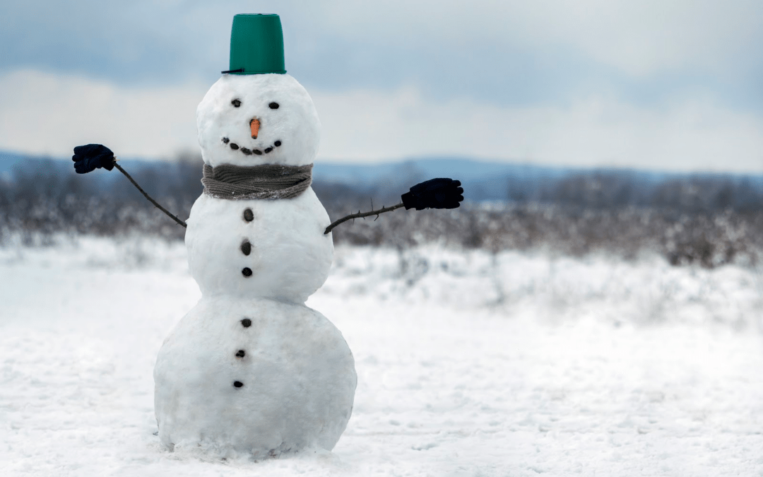 Estate Planning is Like Building a Snowman